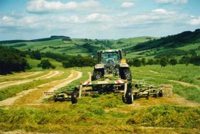 royal welsh grassland