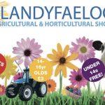 Llandyfaelog show