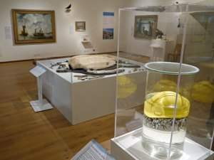 plastic in the sea with the coast exhibition