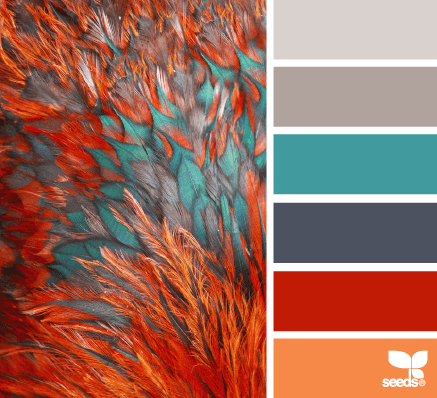 bright home color palette