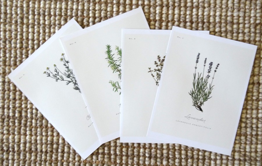 free botanical printables for diy artwork