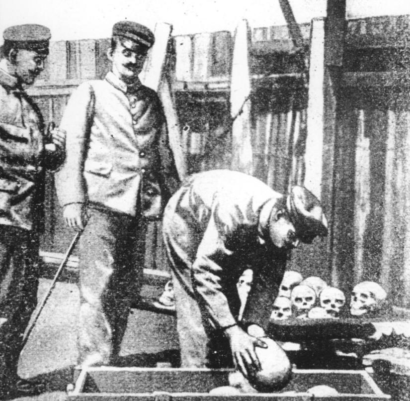 The skulls of fallen or hanged Hereros were packed and sent to the Pathological Institute in Berlin