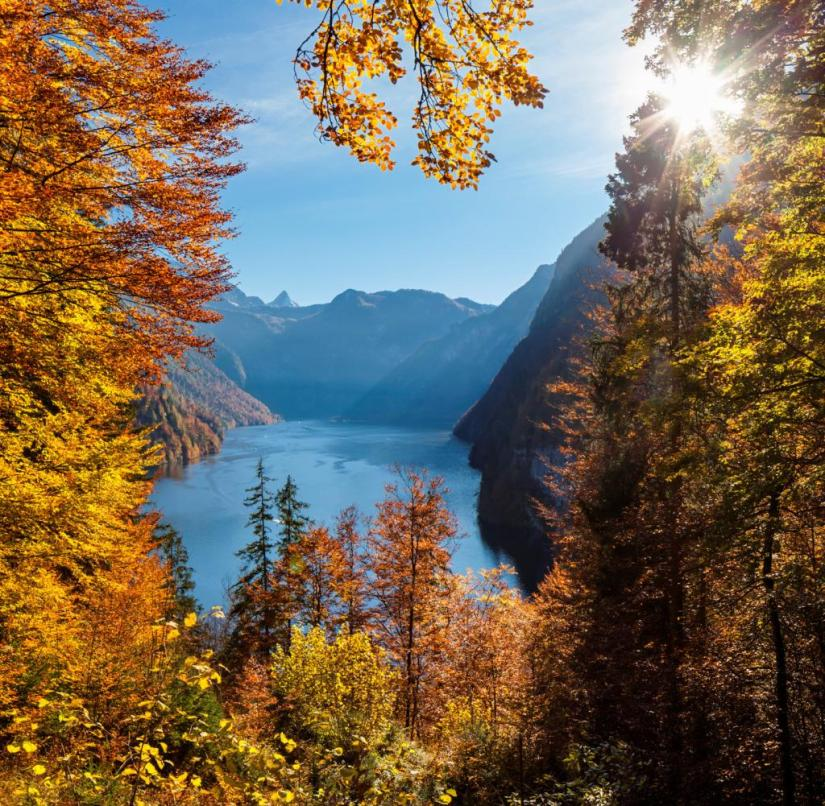 Bavaria's splendor: View of the Königssee in Berchtesgadener Land