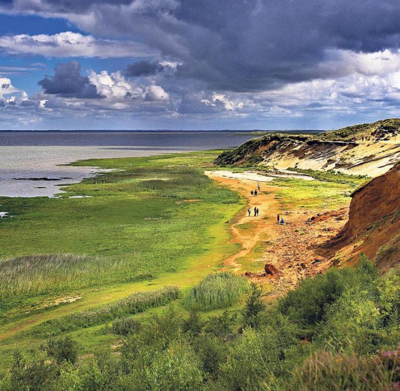 North sea: In the dramatic light is the Morsum cliff on the East coast of the island of Sylt dipped