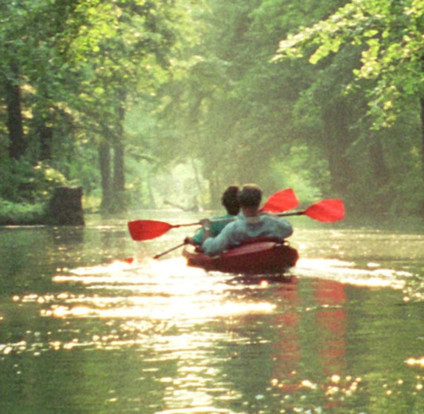 Brandenburg: If you want to explore the Spreewald by paddling, you can rent a boat in various places