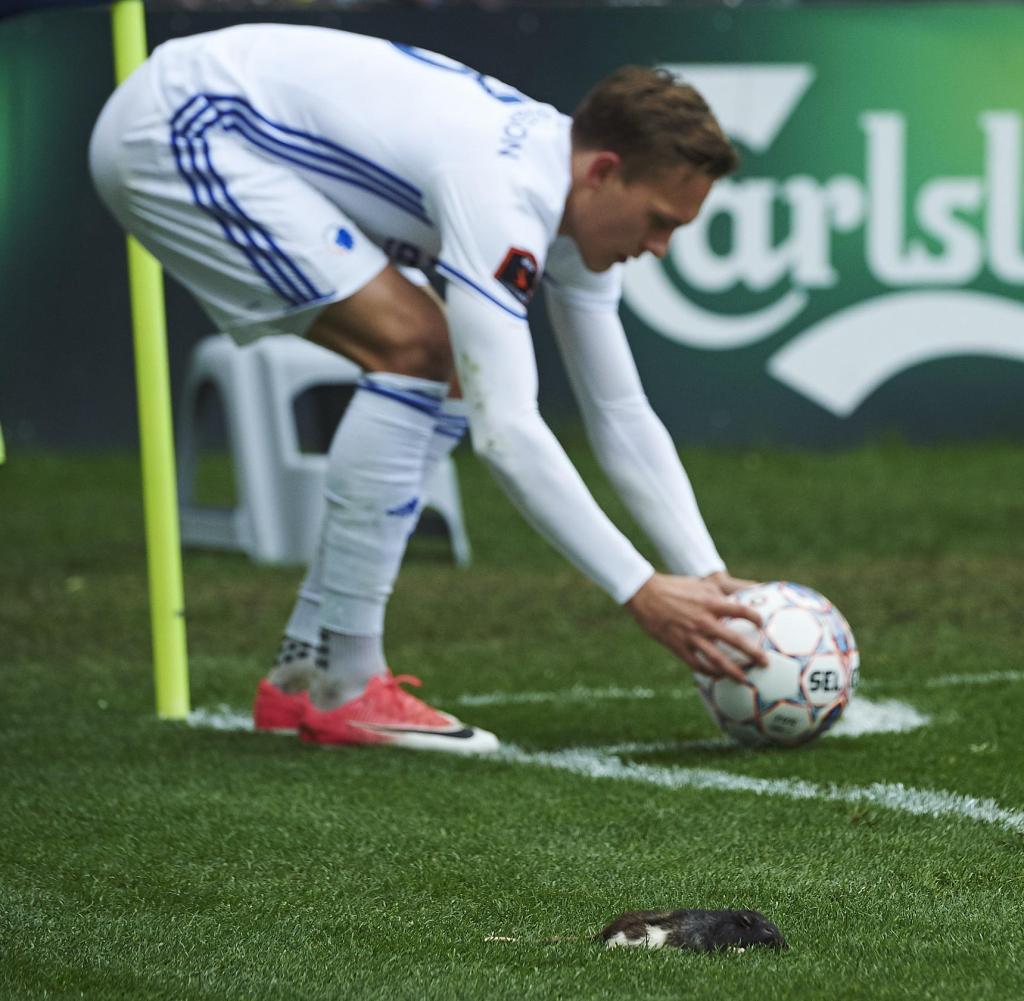 brondby vs copenhagen sofascore italsofa brand fc kopenhagen bröndby fans bewerfen gegner mit toten