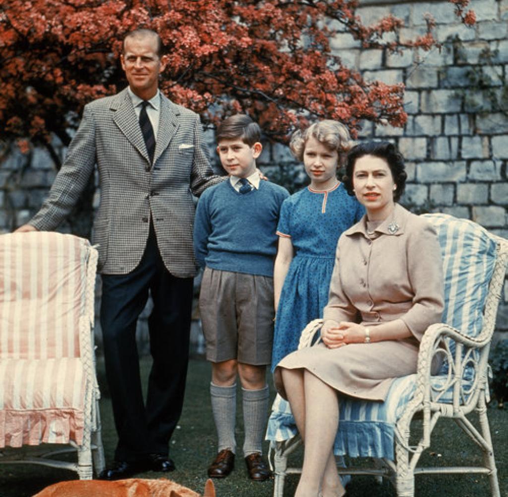Royals Fchse fressen 40 Hhner von Prinz Charles  WELT