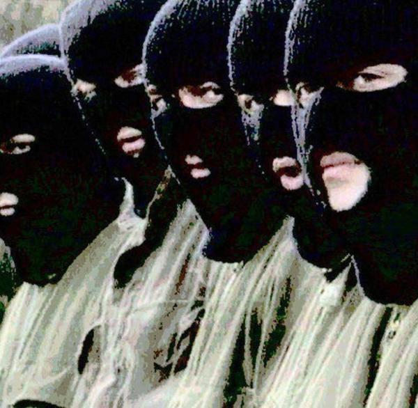 pink panther kriminelle bande # 36