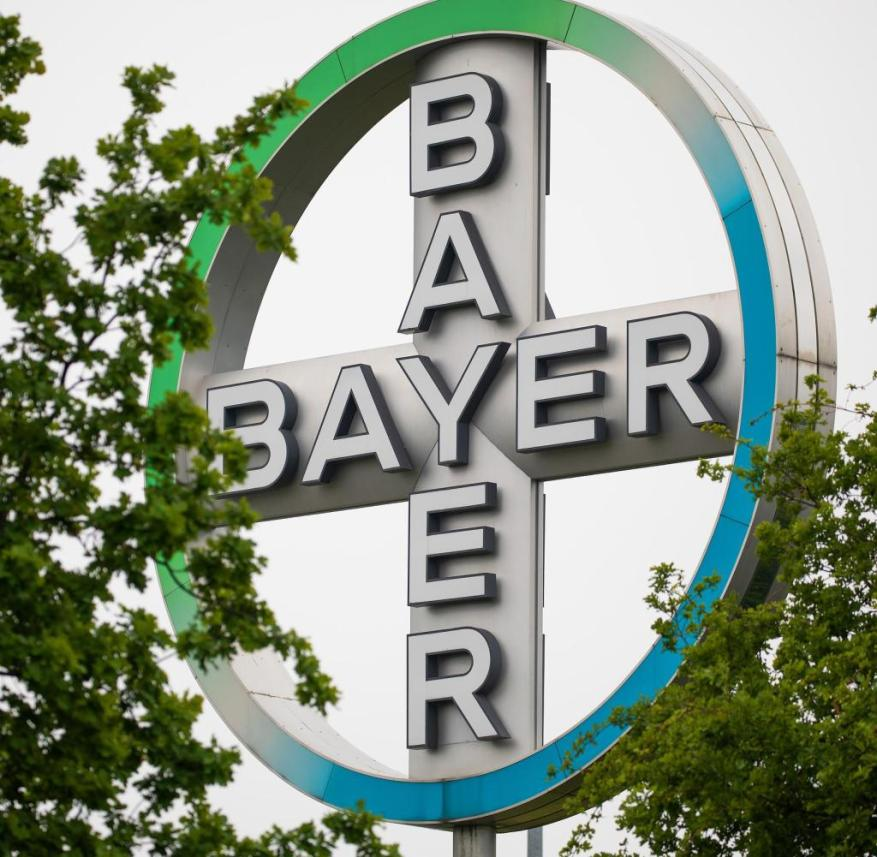 ARCHIVE - May 20, 2019, North Rhine-Westphalia, Cologne: The Bayer Kreuz, logo of the company Bayer, stands between trees at Cologne / Bonn Airport.  Bayer has settled legal disputes with U.S. plaintiffs over alleged cancer risks associated with weed killers containing glyphosate.  Photo: Oliver Berg / dpa +++ dpa-Bildfunk +++ |  Use worldwide