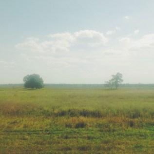 Weissrussland-Landschaft
