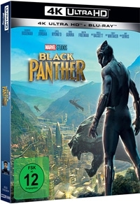 Black Panther, © 2018 MARVEL