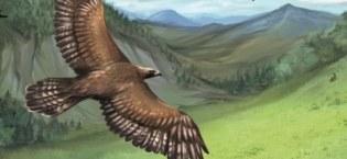 Aventurische Tiergefährten, Rechte bei Ulisses Spiele