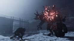 Fade to Silence, Rechte bei THQNordic Games