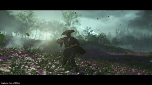 Ghost of Tsushima, Rechte bei Sony Interactive Entertainment