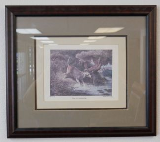 Art Print 30 - The Otter Hound - Used