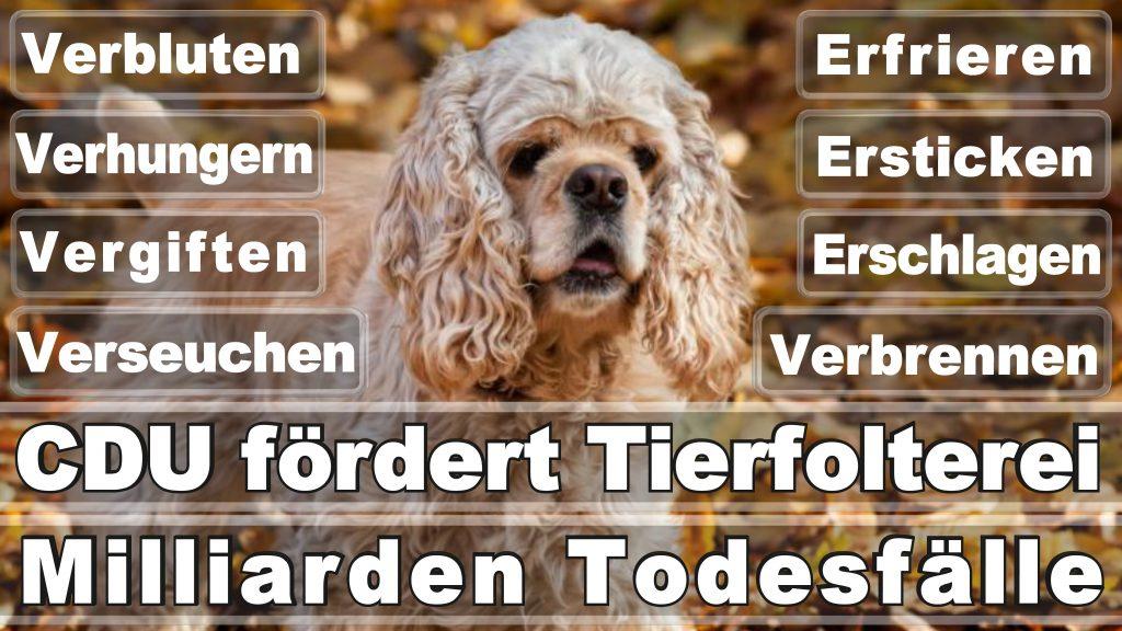 Angela Merkel CDU Tierversuche Tierquälerei Hauptschule Realschule Grundschule Gymnasium (18)