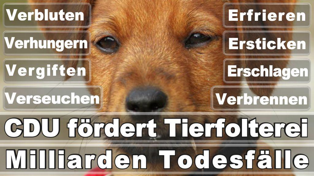 Angela Merkel CDU Tierversuche Tierquälerei Hauptschule Realschule Grundschule Gymnasium (7)