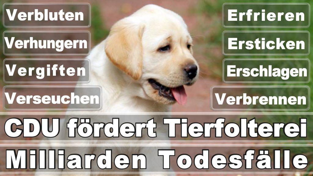Angela Merkel CDU Tierversuche Tierquälerei Hauptschule Realschule Grundschule Gymnasium (8)