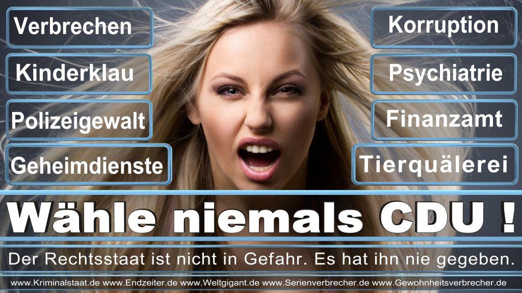 Bundestagswahl 2017 CDU SPD FDP AfD NPD Piratenpartei Wahlplakat Wahlplakate