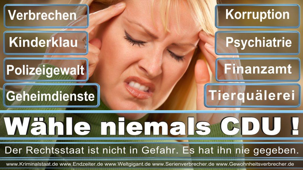Bundestagswahl 2017 CDU SPD FDP AfD NPD Piratenpartei Wahlplakat Wahlplakate (15)