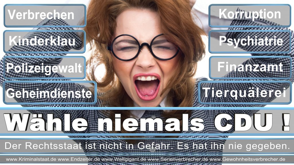 Bundestagswahl 2017 CDU SPD FDP AfD NPD Piratenpartei Wahlplakat Wahlplakate (2)