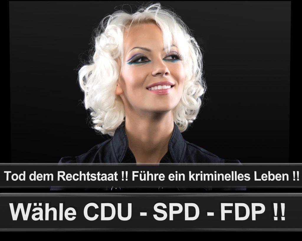 Bundestagswahl 2017 Wahlplakate CDU SPD Angela Merkel Frauke Petry AfD (1)