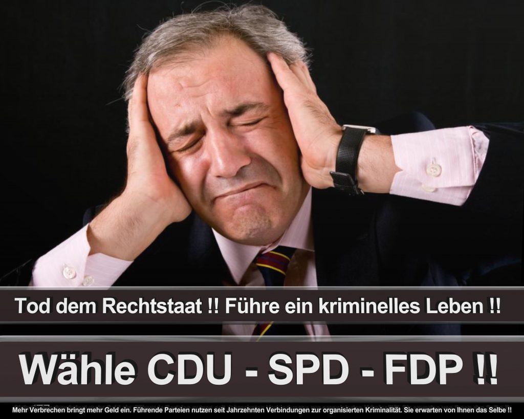 Bundestagswahl 2017 Wahlplakate CDU SPD Angela Merkel Frauke Petry AfD (25)