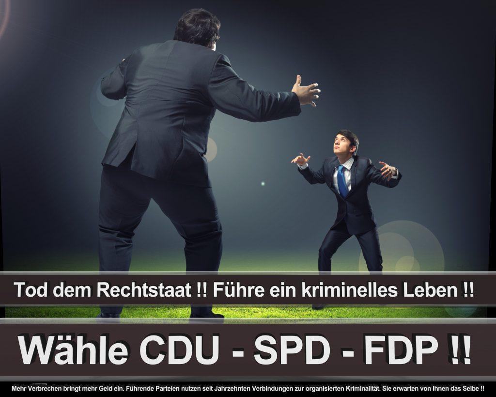 Bundestagswahl 2017 Wahlplakate CDU SPD Angela Merkel Frauke Petry AfD (49)