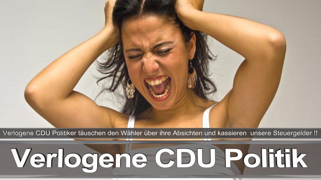 Bundestagswahl 2017 CDU Angela Merkel Frauke Petry AfD Termin Berlin Hamburg (4)