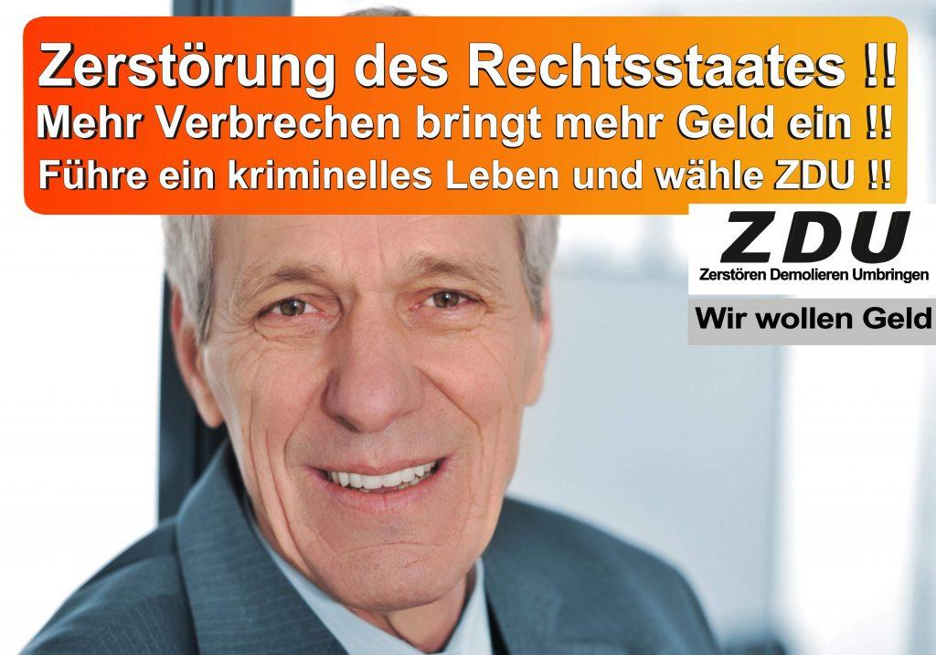 Bundestagswahl 2017 CDU SPD AfD Wahlplakat Bundestagswahl 2017 Umfrage Stimmzettel Angela Merkel CDU CSU (18)