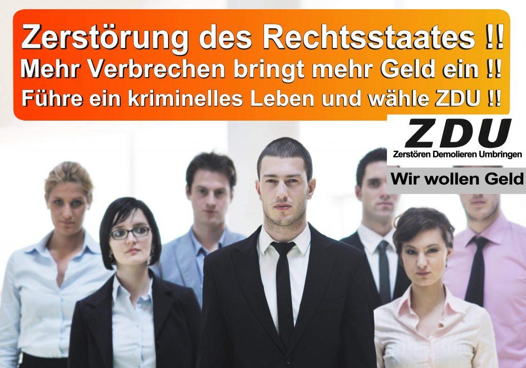Bundestagswahl 2017 CDU SPD AfD Wahlplakat Angela Merkel CDU CSU (21)
