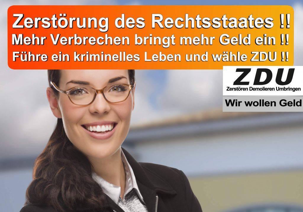 Bundestagswahl 2017 CDU SPD AfD Wahlplakat Bundestagswahl 2017 Umfrage Stimmzettel Angela Merkel CDU CSU (29)
