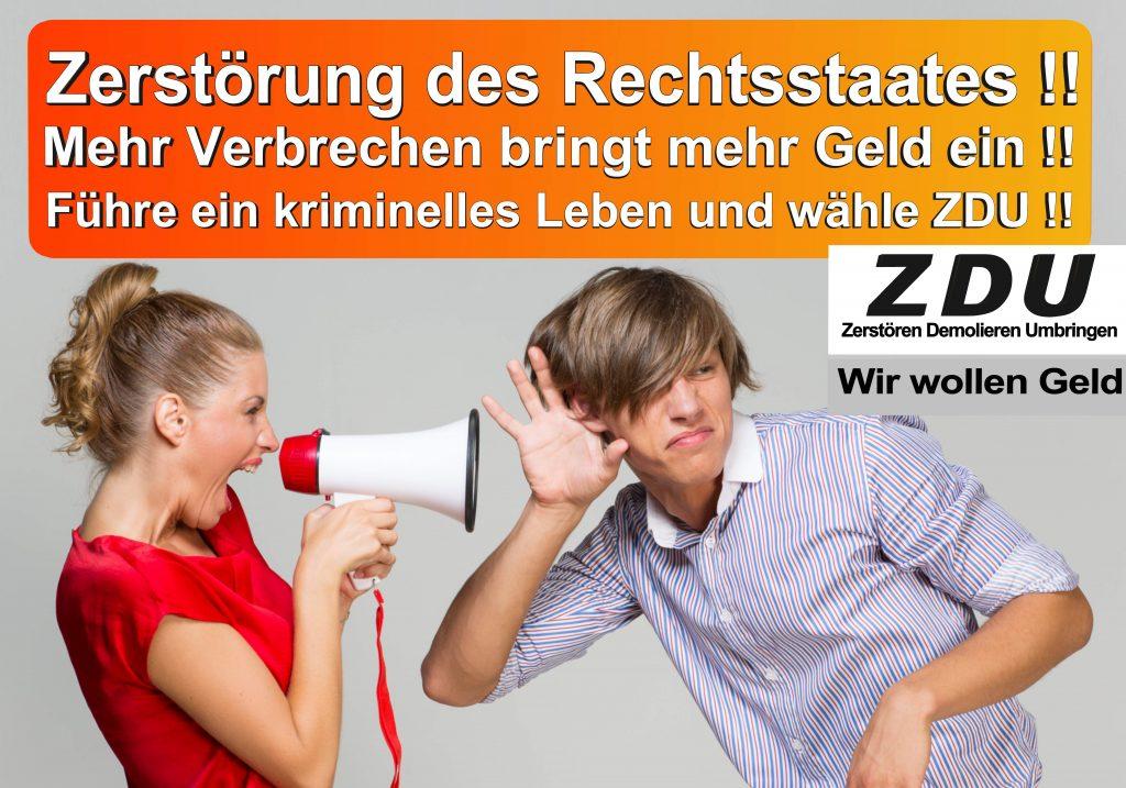 Bundestagswahl 2017 CDU SPD AfD Wahlplakat Angela Merkel CDU CSU (8)
