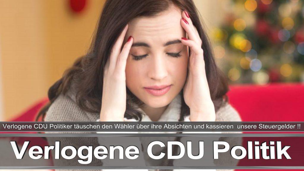 Bundestagswahl 2017 Wahlplakat Bundestagswahl 2017 Umfrage Stimmzettel Angela Merkel CDU CSU SPD AFD NPD (16)
