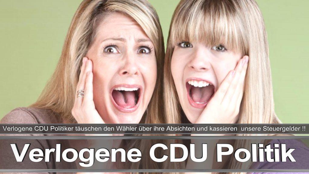 Bundestagswahl 2017 Wahlplakat Bundestagswahl 2017 Umfrage Stimmzettel Angela Merkel CDU CSU SPD AFD NPD (17)