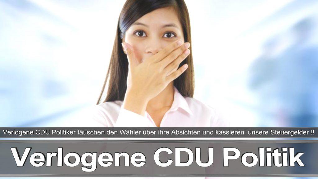 Bundestagswahl 2017 Wahlplakat Bundestagswahl 2017 Umfrage Stimmzettel Angela Merkel CDU CSU SPD AFD NPD (19)