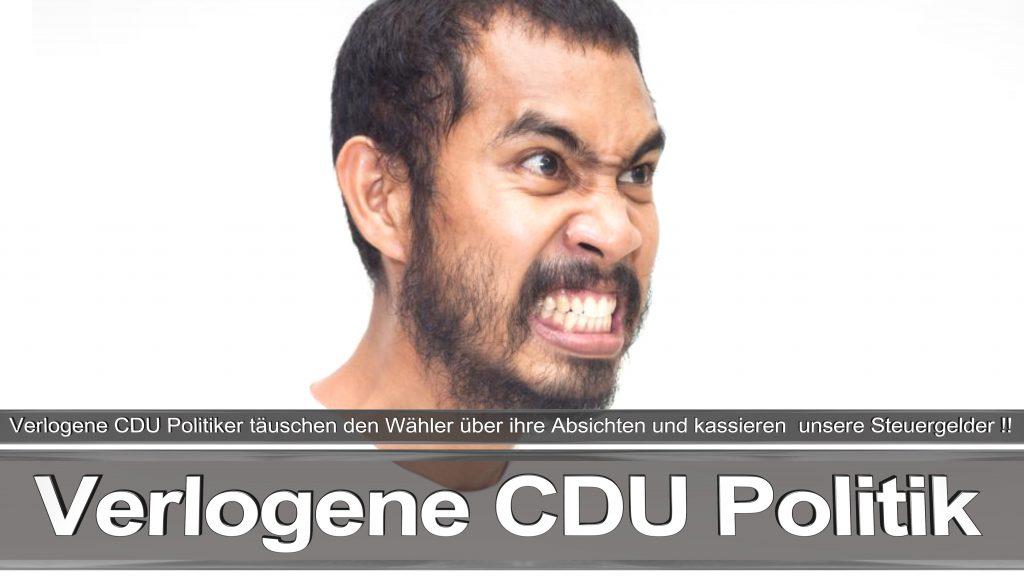 Bundestagswahl 2017 Wahlplakat Bundestagswahl 2017 Umfrage Stimmzettel Angela Merkel CDU CSU SPD AFD NPD (21)