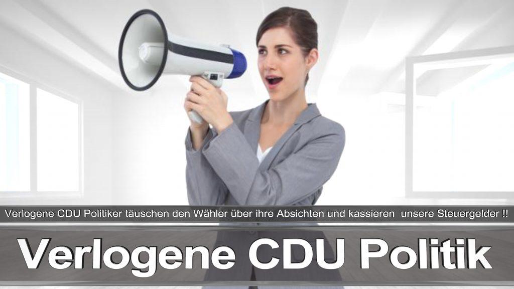 Bundestagswahl 2017 Wahlplakat Angela Merkel CDU CSU SPD AFD NPD (30)