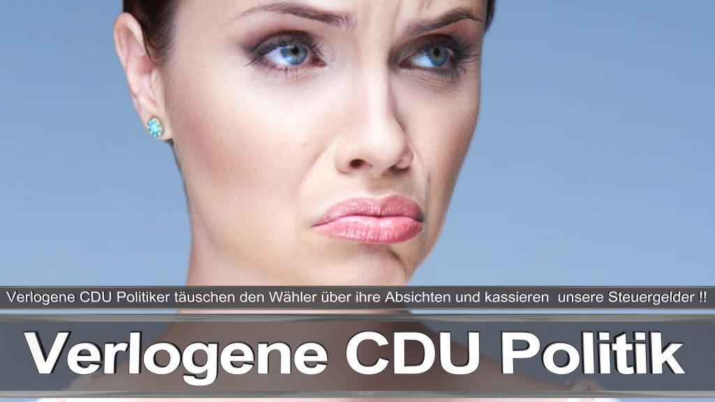Bundestagswahl 2017 Wahlplakat Bundestagswahl 2017 Umfrage Stimmzettel Angela Merkel CDU CSU SPD AFD NPD (31)