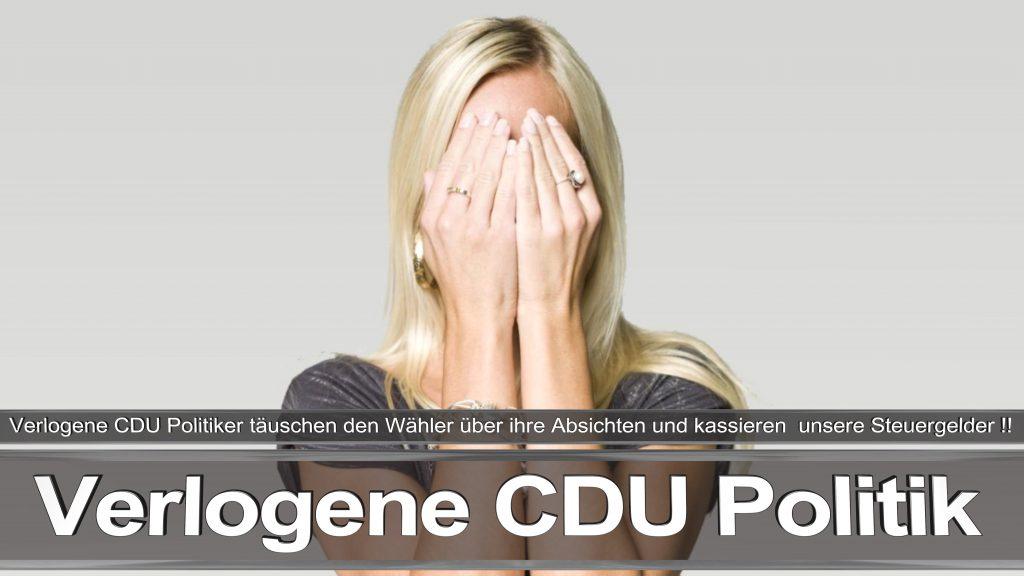 Bundestagswahl 2017 Wahlplakat Bundestagswahl 2017 Umfrage Stimmzettel Angela Merkel CDU CSU SPD AFD NPD (5)