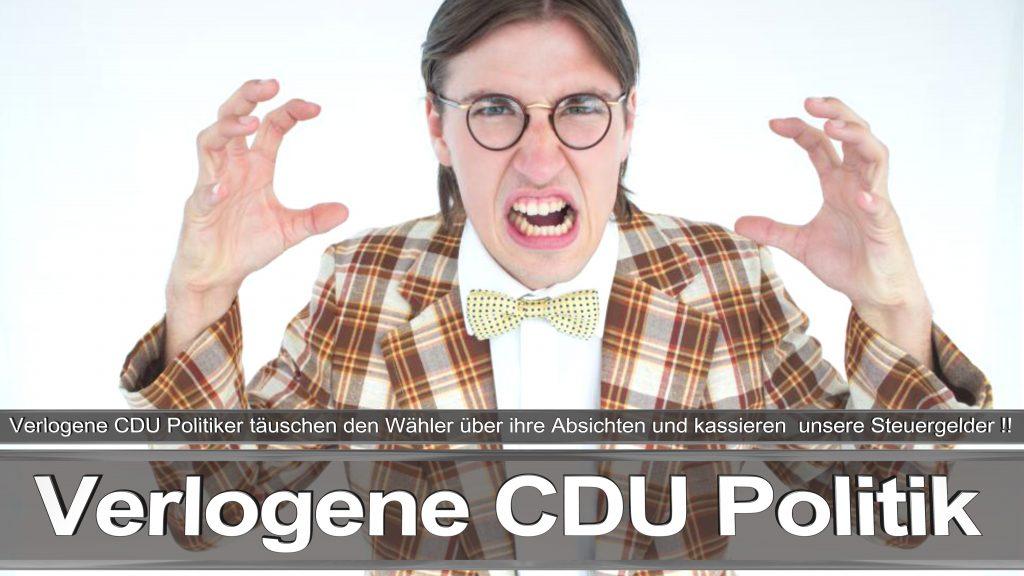 Bundestagswahl 2017 Wahlplakat Angela Merkel CDU CSU SPD AFD NPD (7)