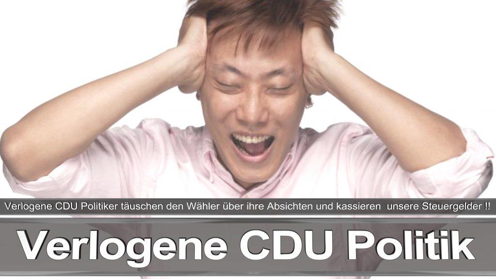 Bundestagswahl 2017 Wahlplakat Bundestagswahl 2017 Umfrage Stimmzettel Angela Merkel CDU CSU SPD AFD NPD (8)