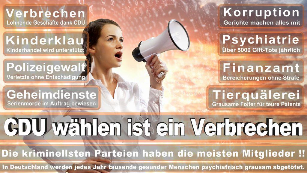 CDU Wahlplakate 2017 Angela Merkel Kundgebung Interview Europawahl CDU SPD FDP AFD NPD (27)
