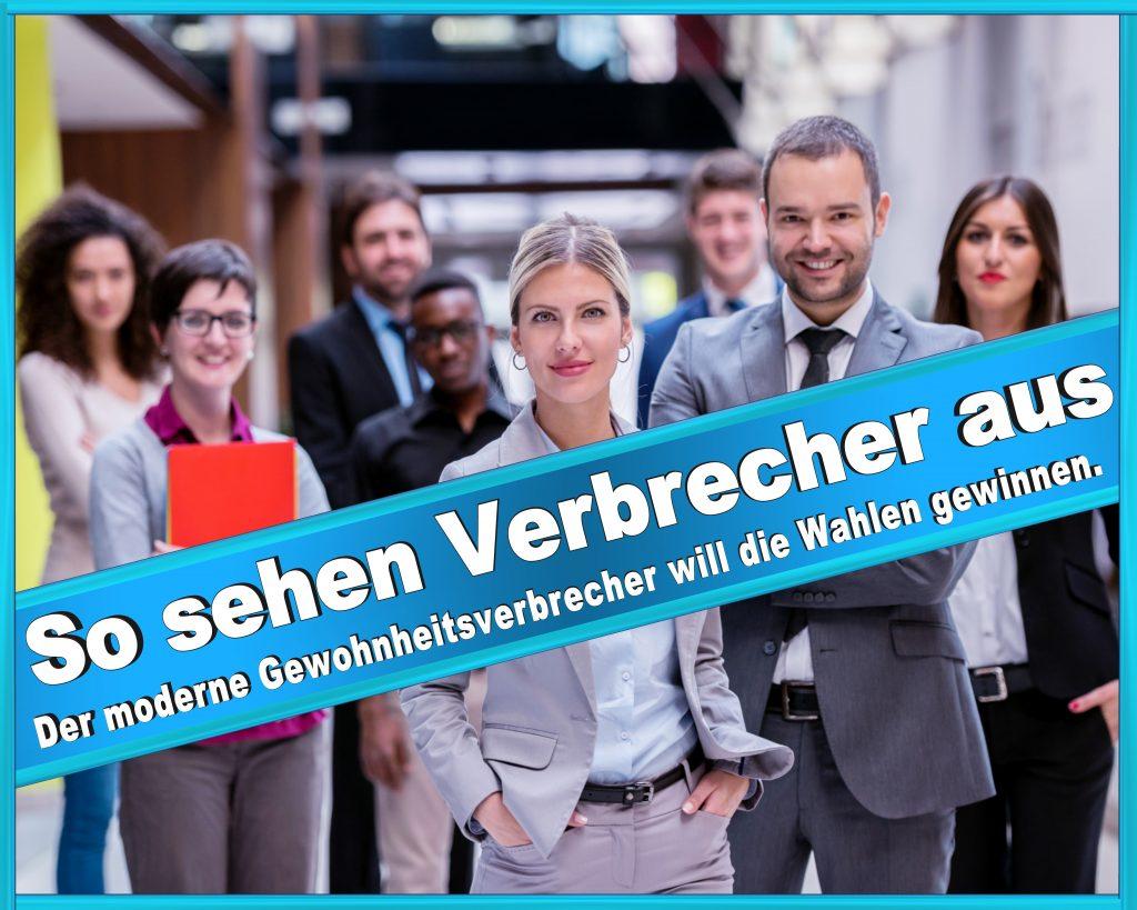 Wahlplakate Bündnis 90 Die Grünen Die Linke Sarah Wagenknecht Tierschutzpartei (3)