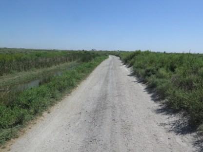 """""""dirt road"""""""