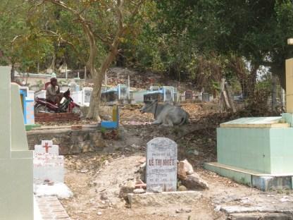 erster Friedhof seit langem