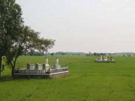 Gräber auf den Feldern