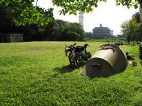 Zelten im Stadtpark