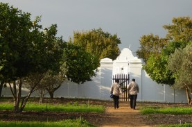 Winelands_Babylonstoren_Frauen