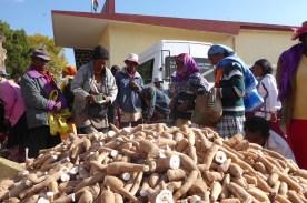 Madagaskar_Markttag